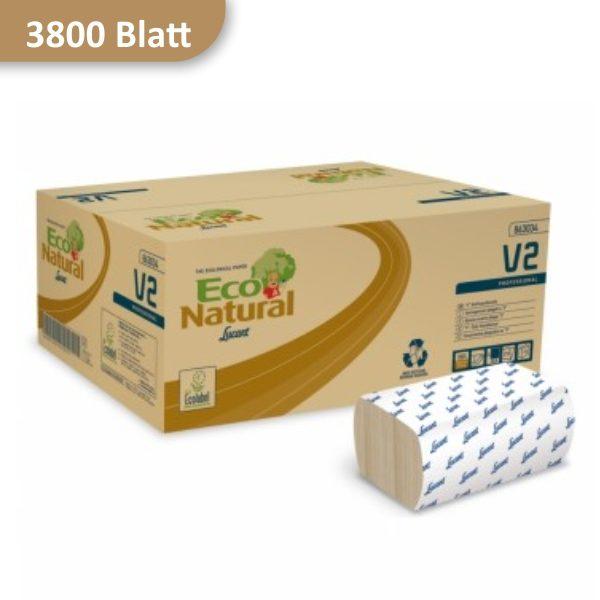 Karton Papierhandtücher Eco von Lucart